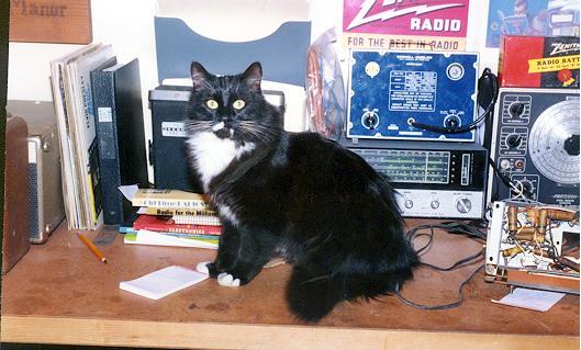 Dave's Antique Radio's